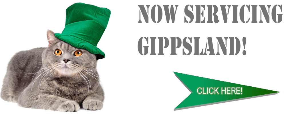 Elite Cat Enclosures now service gippsland too! Click Here to learn more